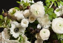 Compositions Florales 4